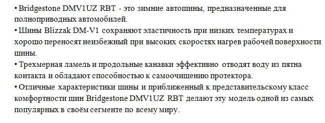 Blizzak DM-V1