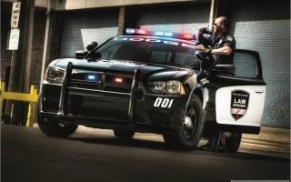 Играя в Pokemon GO американец врезался в полицейский автомобиль