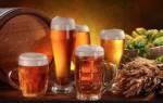 Чем отличается живое пиво от обычного?